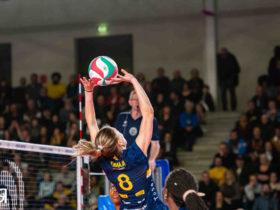 Volley-ball : Narbonne rêve plus que jamais de l'Europe