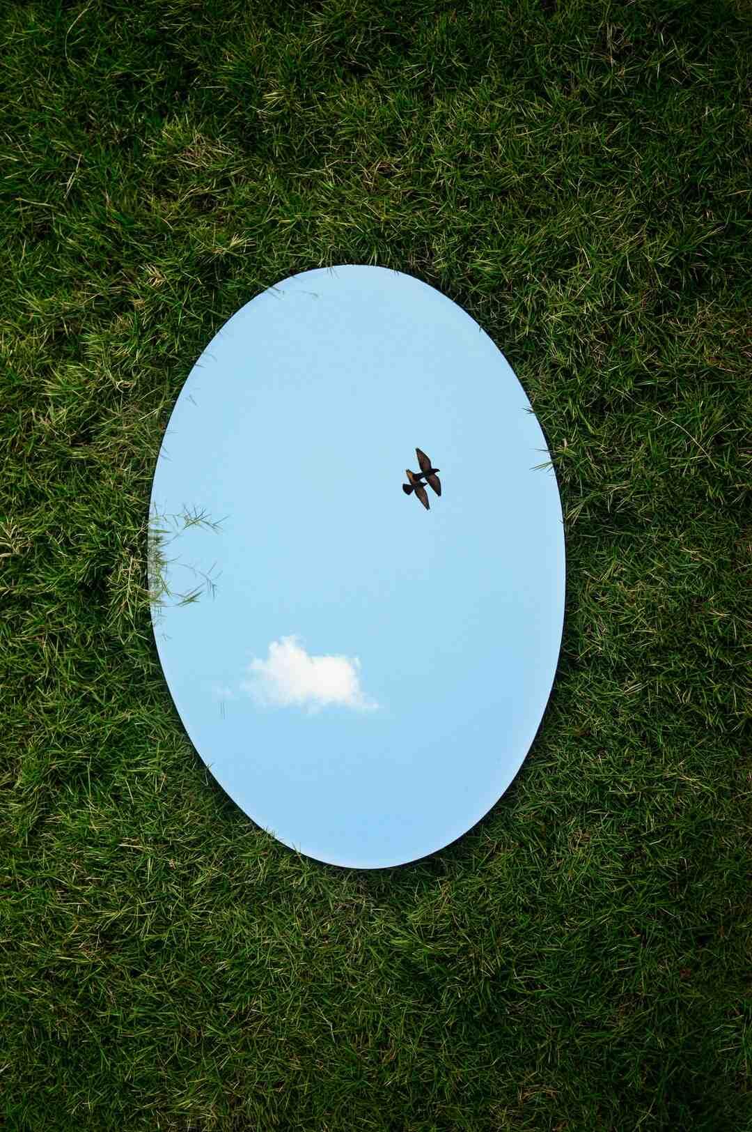 Comment  Accrocher un miroir