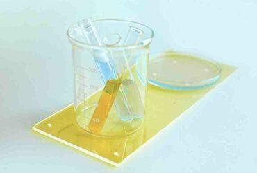 Comment  Faire croître des bactéries dans une boîte de Petri