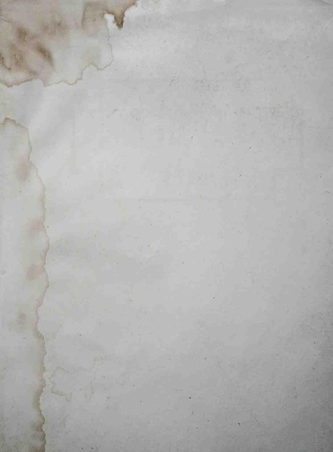 Comment  Faire germer des graines de haricots sur de l'essuie‐tout humide