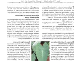 Comment  Planter et entretenir un colocasia