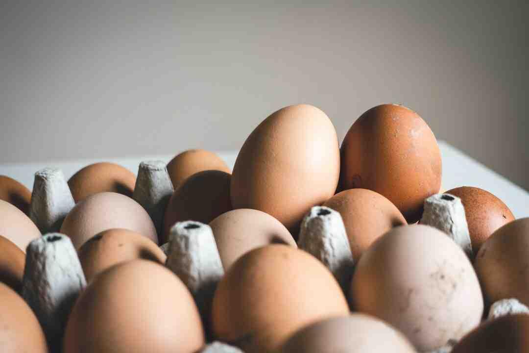 Est-ce que les œufs durs flottent ?