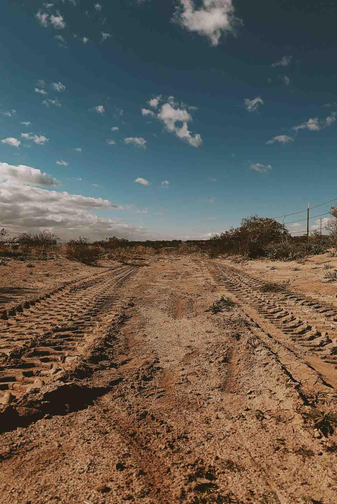 Pourquoi il est important de préserver les sols ?