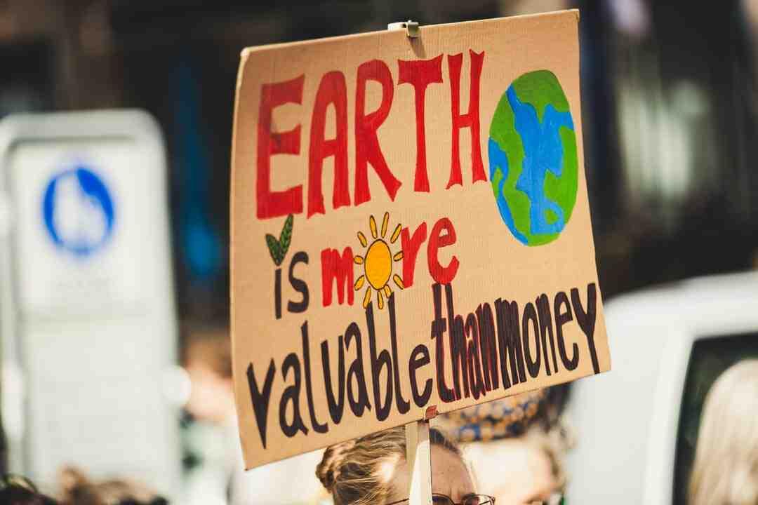Pourquoi la Journée mondiale de l'environnement ?