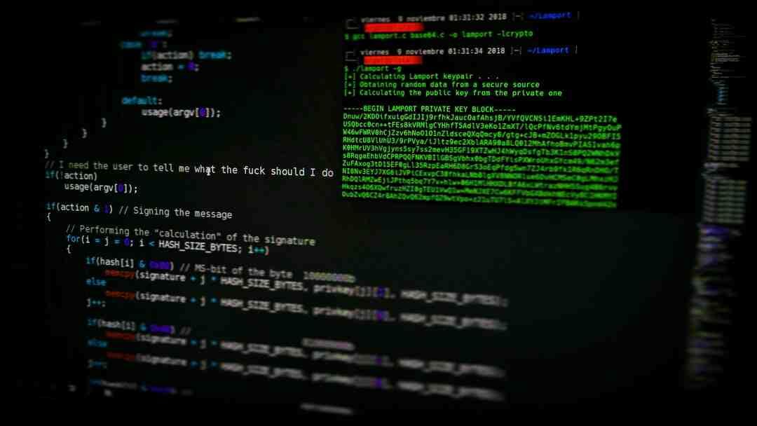 Quel bac pour hacker Ethique ?