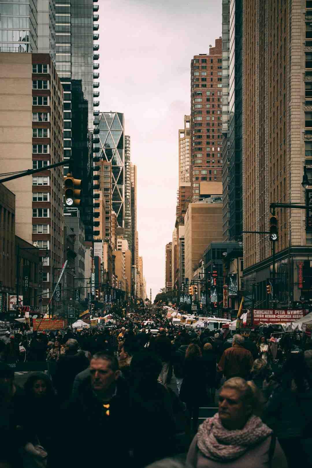 Quel est la densité de la population ?