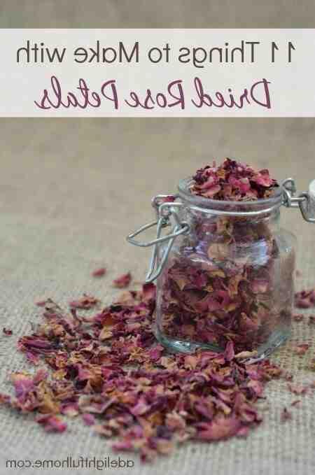 Comment  Conserver des pétales de rose