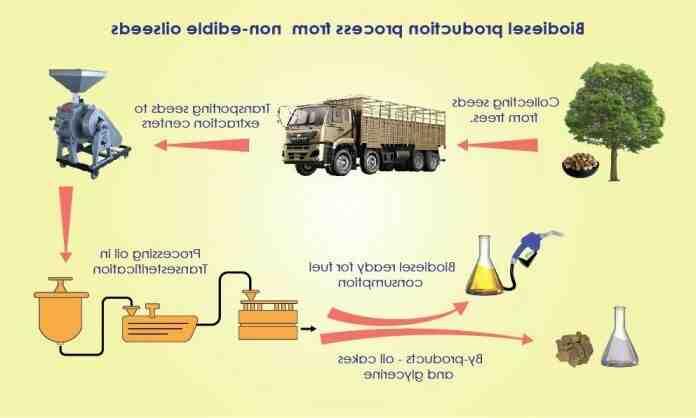 Comment  Fabriquer du biodiesel