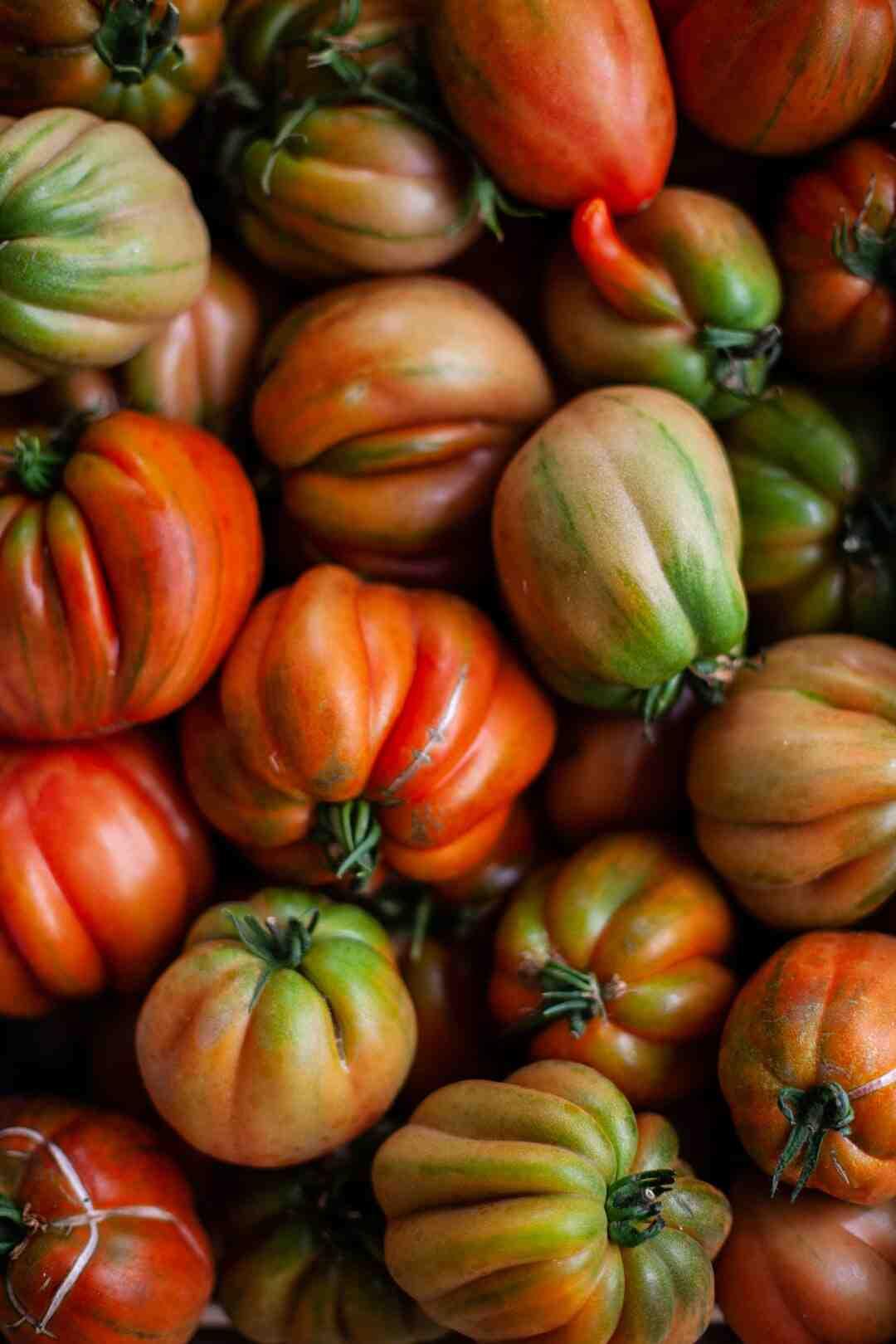 Comment  Faire pousser des tomates à l'envers