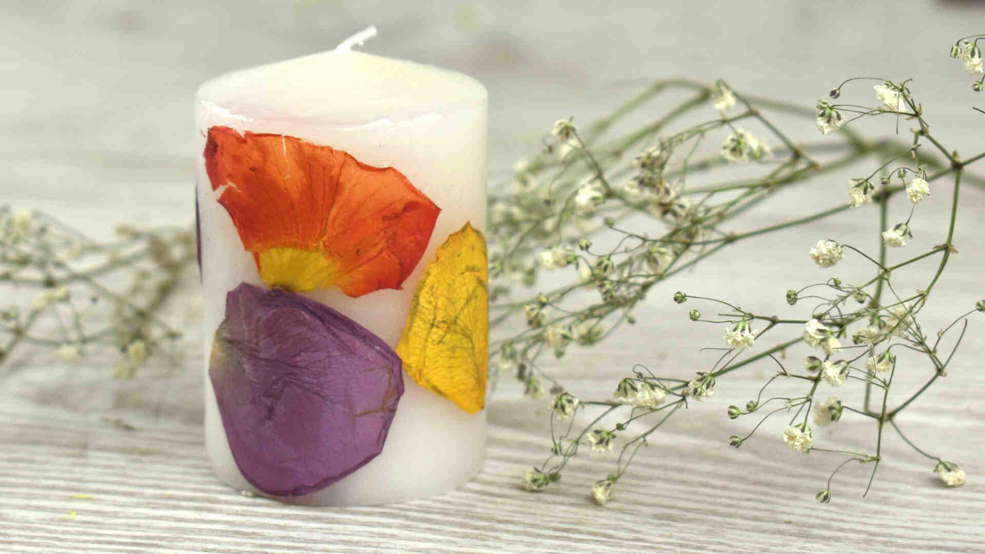 Comment faire sécher des fleurs au four ?