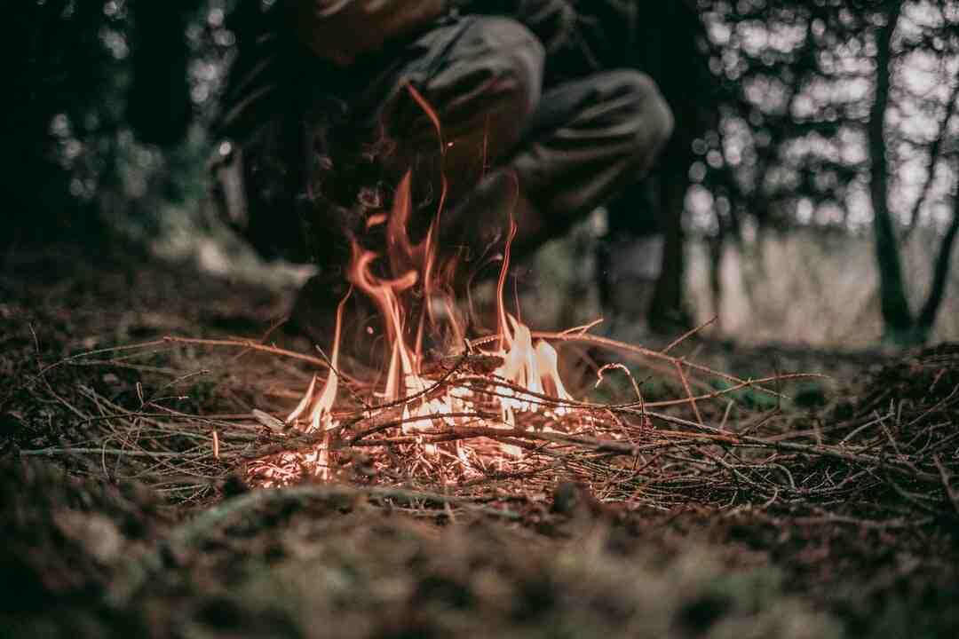 Comment organiser une chasse au trésor en forêt ?