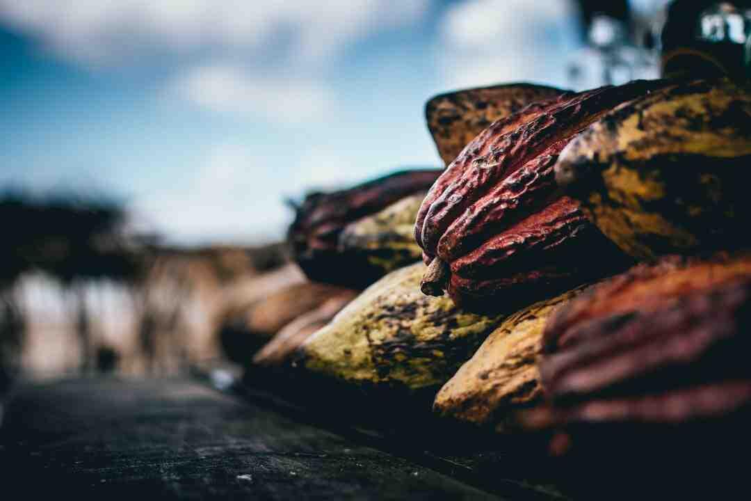 Comment remplacer le chocolat pâtissier par cacao en poudre ?