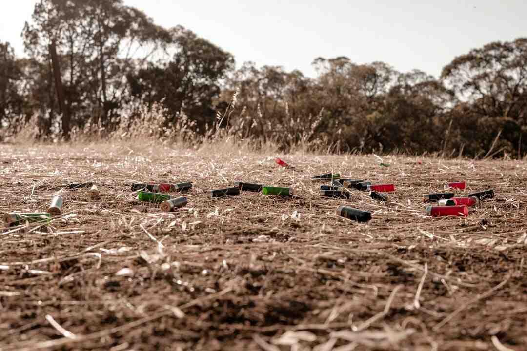 Quels sont les agents polluants du sol ?