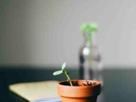 Comment  Calculer le taux de croissance annuel composé