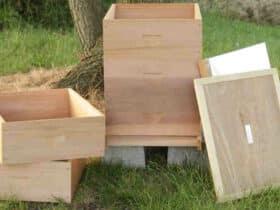 Comment  Construire une ruche horizontale avec des palettes