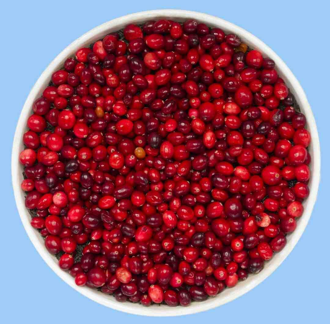 Où se cultive le cranberry ?