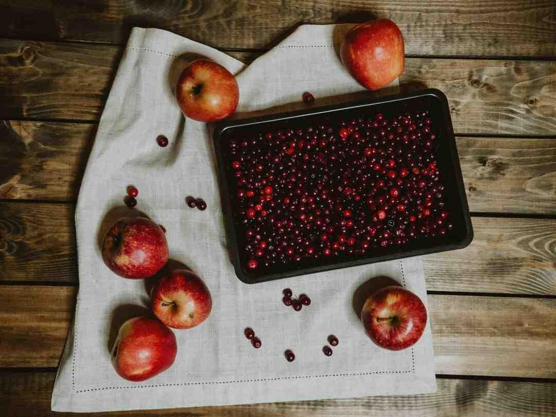 Quand cueillir les Cranberries ?